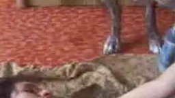 Чувственная беременная шалава заскучала по ебле и порется с четырехлапым порно зоо фильм